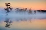 Mist On Lake Martin 26109