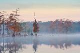 Misty Lake Martin 26661