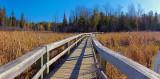 Old Quarry Boardwalk 10074-5