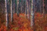 Rideau Trail 10729-31 Art