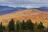 Laurentian Mountains 42343