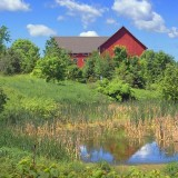 Barn & Pond 14934-6