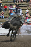 Riding the Black Bull II