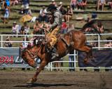 Saddle Bronc Ride II