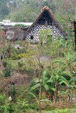 morung in Boro Haflong, North Cachar Hills, Assam, India