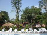 Our second Home - Chitwan