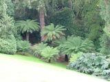 Entrance to the Garden
