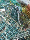 Lobster Traps 1
