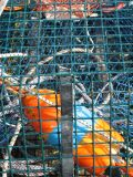 Lobster Traps and Buoys 2