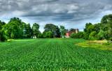 Farm Field on Hwy. 20 near La Grange in Walworth County