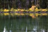 leigh lake shoreline