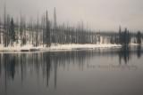 lewis river fog