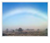 *White Rainbow*