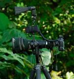 Tawau - My bird camera set up.jpg