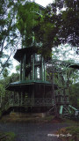 Sepilok - 1st tower at RDC