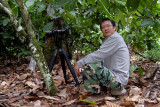 Tawau - Wong is waiting for the Hooded Pitta, who shows up at a friend's cocoa plantation.