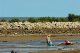 Tawau - Tinaget Beach, limited wintering ground for waders