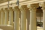 Caesar's Palace 25609