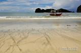 D300_13916 Gota Beach copy.jpg