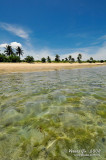 D300_14112 Sabitang Laya Island copy.jpg