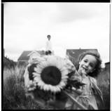Sunflower Seeds, Marienfeld 2008