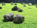 Rocks and Grass
