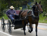 Amish Buggy Ride -
