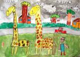 giraffe, Tony, age:6