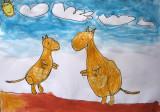 kangaroo, David, age:5.5