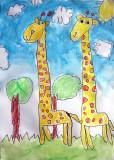 giraffe, Ivan, age:5.5