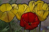 flowers art 0308_tn.jpg