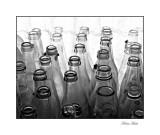 bottles 2008 01_tn.jpg