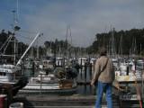 Boats at Noyo harbor