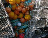 lobster creels :: lyme regis