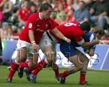 Wales v France13.jpg