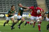 Wales v S.Africa1.jpg
