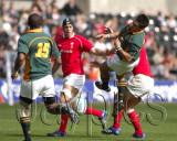 Wales v S.Africa2.jpg