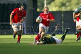 Wales v S.Africa5.jpg