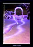 YN6Y30132-copy-b.jpg