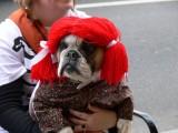 Gatlinburg Halloween 2009