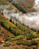 Fall on Snowbasin Mountain