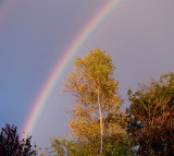 Rainbow at the end of the -garden -22 Oct 2009