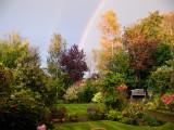 Garden rainbow 22 October 2009