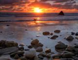 Oyster Catcher Sunset.jpg