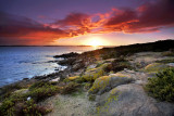Point Ellen Sunrise.jpg