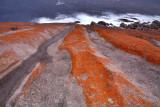 Remarkable Rocks redux.jpg