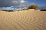 Little Sahara_13.jpg