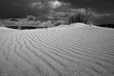 Little Sahara_13_bw.jpg