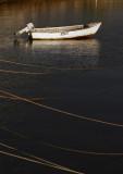 Nepean Bay_12.jpg