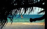 The Charmful Mombasa Beach